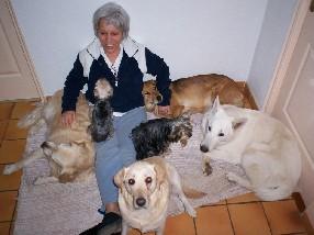 Pension canine chien chat Saint Paul Trois Châteaux