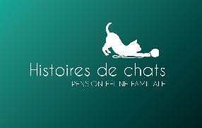 Histoires de chats Armissan