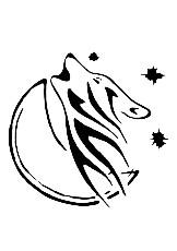 logo Nany Canin