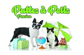 logo PATTES A POILS