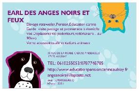 PENSION CANINE AULNAYSIENNE Aulnay