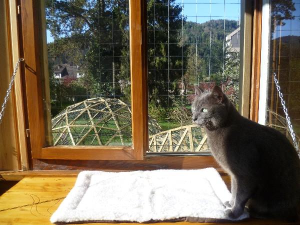 Depuis la véranda, vue sur le jardin et le dôme.Sécurisées par une structure grillagée, les fenêtres peuvent s'ouvrir pour que les pensionnaires apprécient mieux encore tous les bruits du jardin et la lumière directe du soleil.