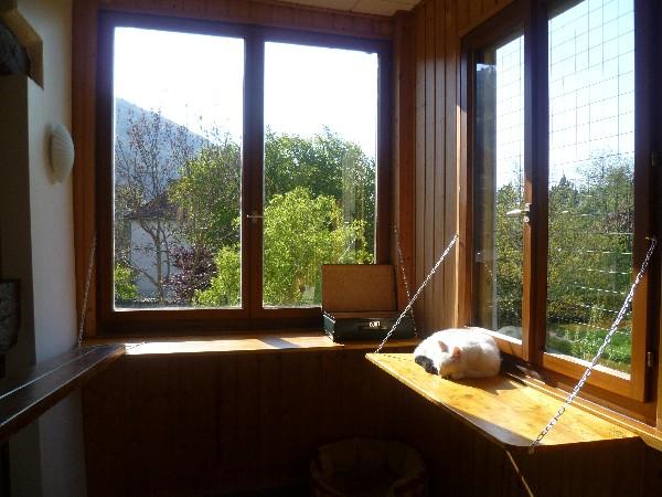 Les fenêtres de la véranda ont été élargies par des jolies tablettes en bois pour que les pensionnaires puissent se prélasser au soleil ou observer les oiseaux du jardin.